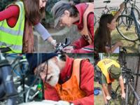 free bike check and repair!