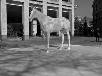 ) Mark Wallinger's The White Horse, Outside the British Council