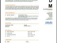 What Makes a Good CV?