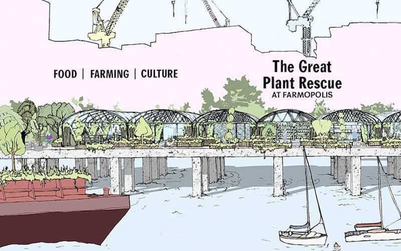 New floating farm