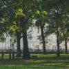 London's Green Park
