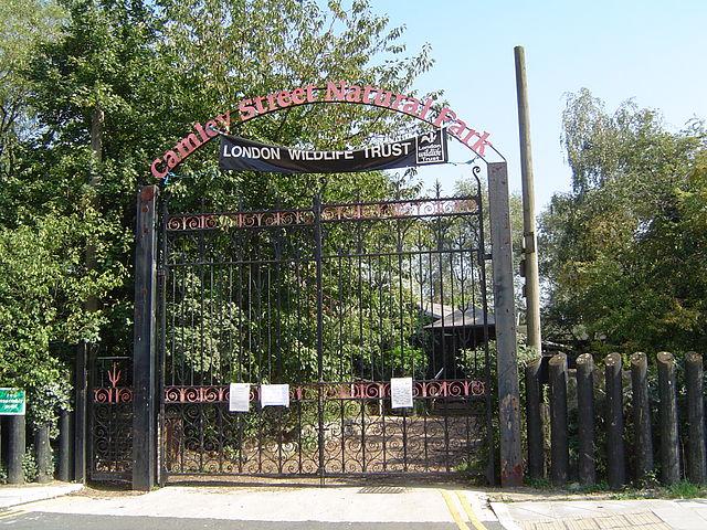 Camley Street Natural Park Visit
