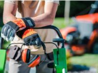 4 Tips on Starting Your Gardening Business